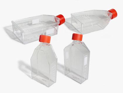 Gewebekulturflaschen